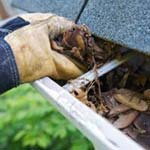 Grays Harbor County Gutter Cleaning